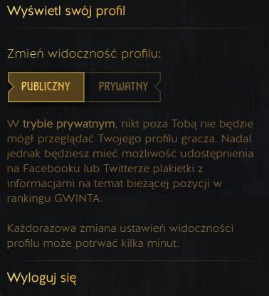 Profil gracza
